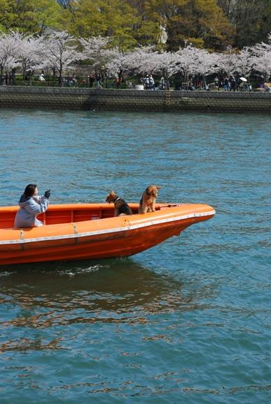 boat&qwan.JPG